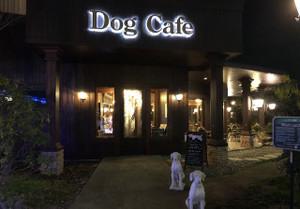 Dogcafe_3